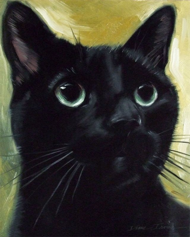 Original oil painting of black cat Felix by Diane Irvine Armitage.