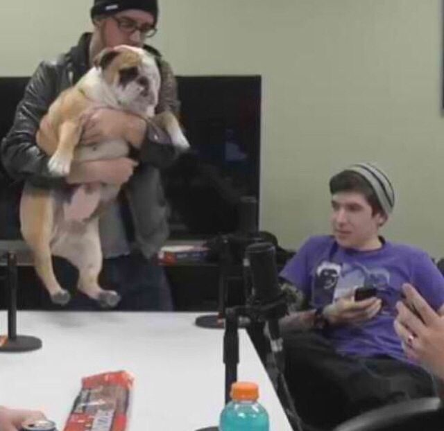 immortalhd and puppychef - photo #3