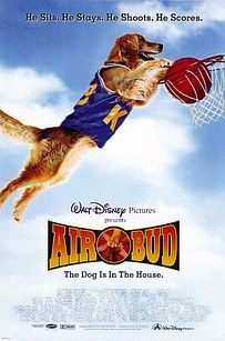 Buddy the Wonder Dog, the golden retriever who played Buddy in Air Bud, also played Comet on several episodes of Full House. | 19 Mind-Blowing Facts Every '90s Kid Would Want To Know