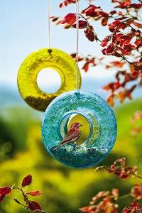 Pretty bird feeders: Harvest Moon, Glasses Birds, Birds Feeders, Gardens Idea, Moon Birdf, Full Moon, Blue Moon, Moon Glasses, Moon Birds
