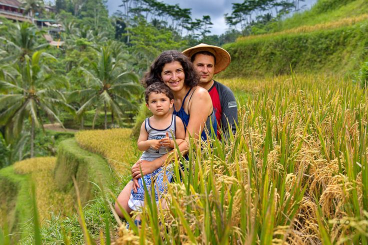 Family photography on rice terraces Tegalalang, Bali