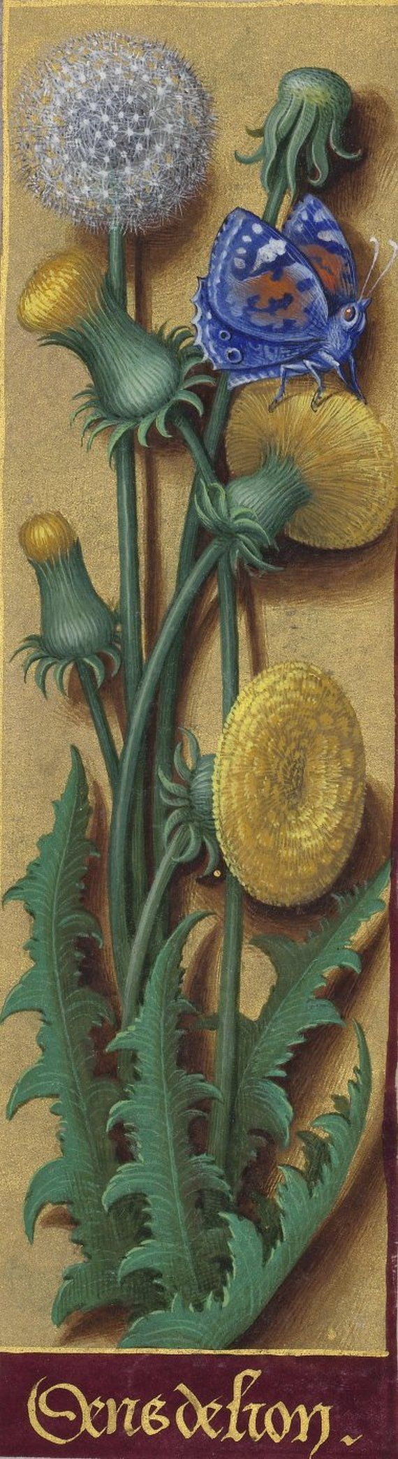 http://gallica.bnf.fr/ark:/12148/btv1b52500984v