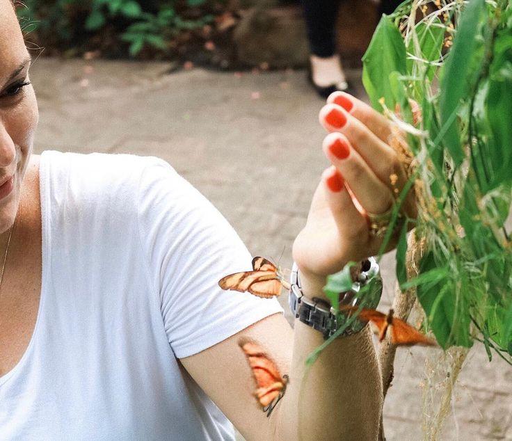 Conhecendo o borboletário do hotel sesc pantanal! Lugar lindo!  #whpinspired