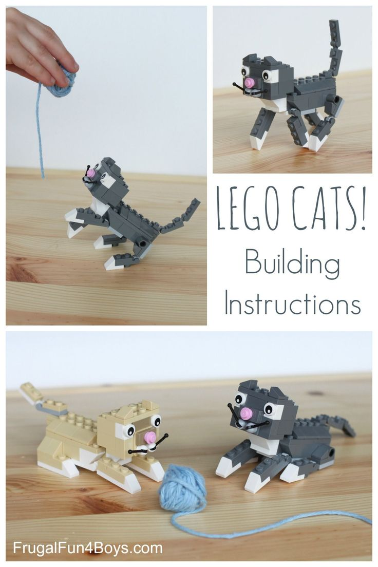 How to Build LEGO Cats