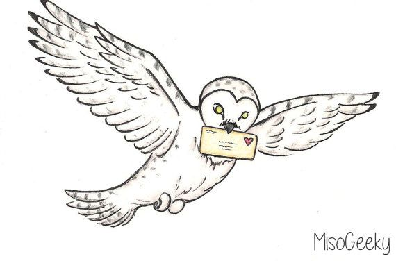 Love Letter Delivery Harry Potter Hedwig Drawing by