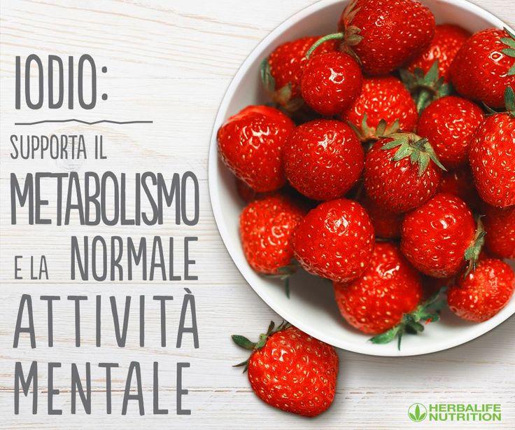 Lo #iodio è utile al corpo e alla mente ed è abbondante nelle #fragole.  Aggiungile al tuo #HerbalifeSHAKE oggi!