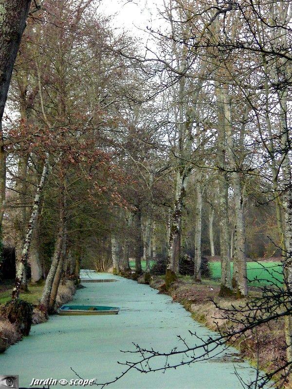 Promenons nous dans les bois… en février