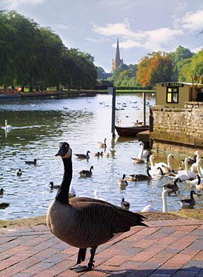 The River Avon at Stratford-upon-Avon, Warwickshire, UK