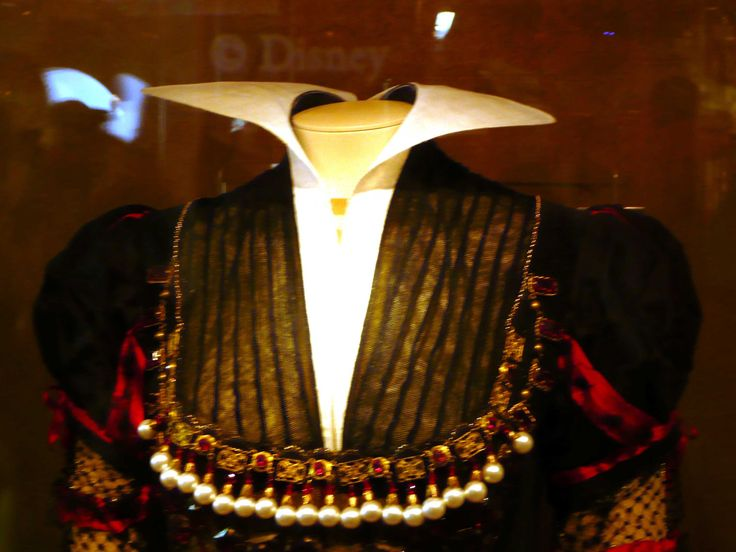 The collar & bodice detail