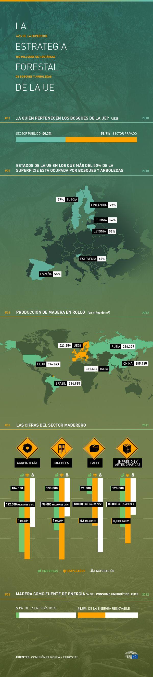 Bosques y arboledas cubren el 40% de la superficie europea y los sectores económicos vinculados generan alrededor de 3,5 millones de empleos. Es vital que la estrategia a largo plazo se centre en la gestión sostenible así como en la rentabilidad social y económica del sector. Nuestra infografía detalla las cifras más destacadas de los bosques europeos.