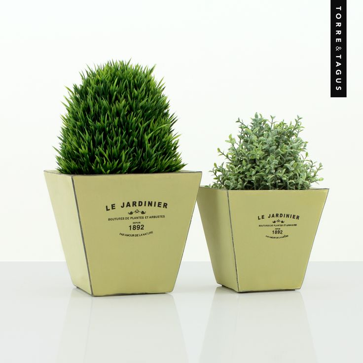Bring your garden indoors with Le Jardinier French vintage inspired planters – perfect for herbs and small potted greenery to give your indoor space a fresh look. #TorreAndTagus #Planters #ColourYourHome #HomeDecor www.torretagus.com