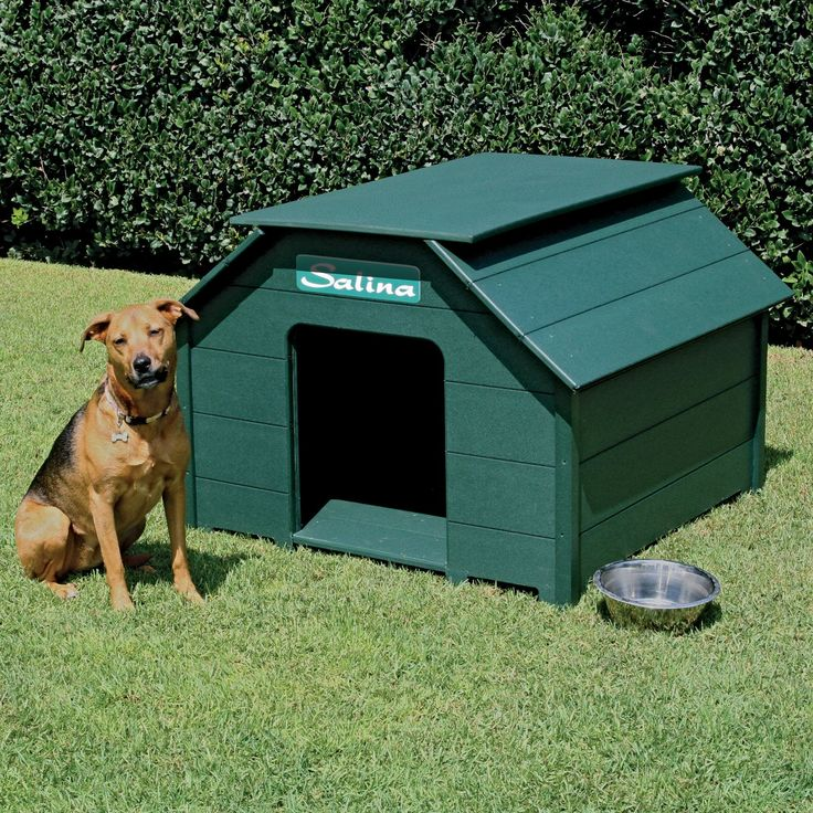 20 Beautiful and Funny Dog house plans