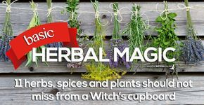 ☽✪☾...Herbal Magic is a very powerful form of Natural Magic. It can be used by anyone with little supplies and have remarkable results. 11 essential magical herbs