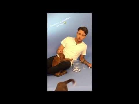 Liam Payne - New Rules | Dua Lipa Cover - YouTube