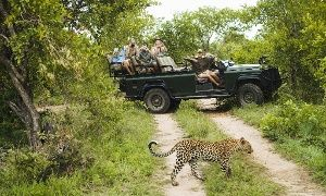 Groupon - One-Hour Game Drive from R199 with Optional Archery and Accommodation with Ngiri Safaris (Up to 55% Off) in Pretoria. Groupon deal price: R199