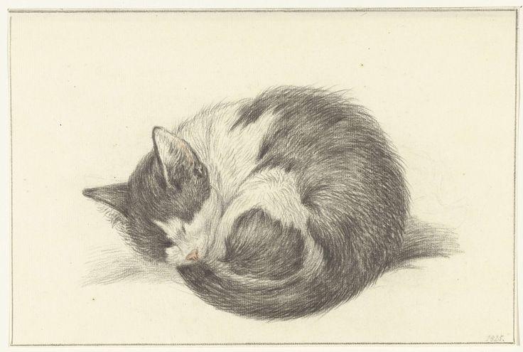 Opgerold liggende, slapende kat, Jean Bernard, 1825