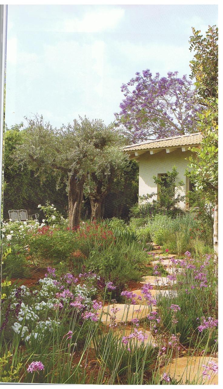 22 besten bildern zu mediterranean garden auf pinterest   gärten, Gartenarbeit ideen
