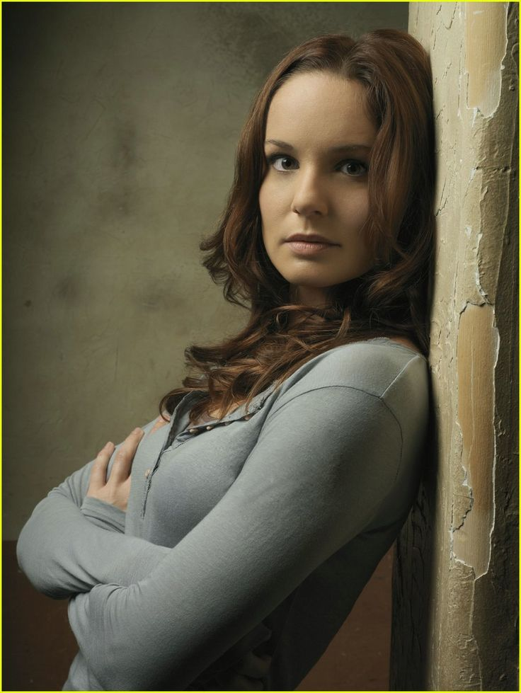 Sara Tancredi Prison Break