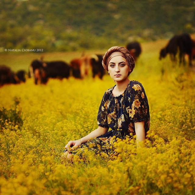 Summer flowers. Tatyana Yanchoglo, by Natalia Ciobanu.
