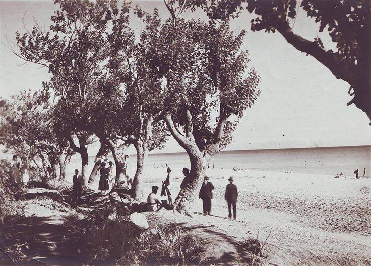 Florya / 1919