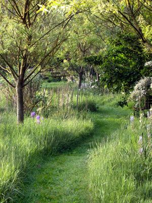 Let an area of the lawn grow wild, then create a path through the tall grass with a riding mower or weedwacker.