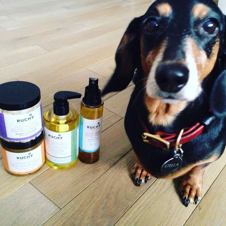 Stella is a fan purely due to the fact that our products are cruelty-free. We love you right back, Stella.