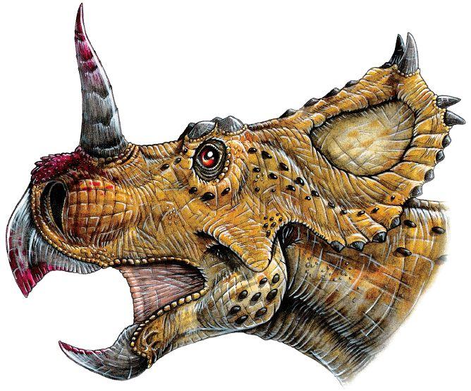 динозавр с рогами картинки осб панели настолько