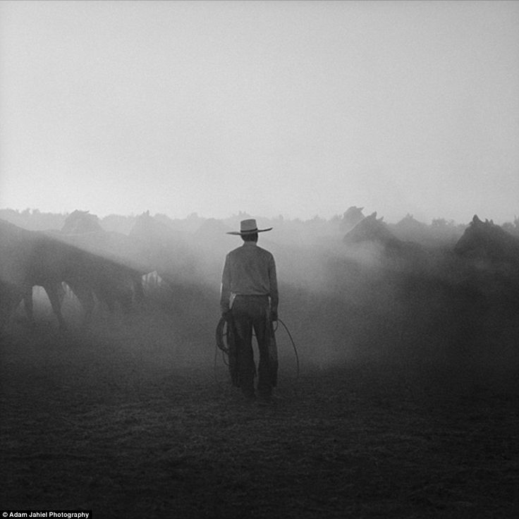"""cowboy subculture paper This working paper is distributed for purposes of comment and  consensus  driven h-p was, and led them to resist the """"cowboy"""" culture at."""