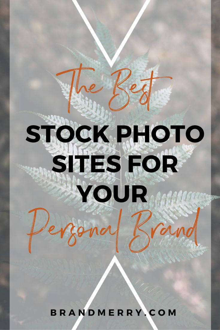 Branding is super important for your business to stand out online. That's why I am sharing my top free stock photo sites to match your brand. Click to get the list! branding tips, branding help, branding tips and tricks, branding ideas, brand building tips, brand building, brand development, brand tips for entrepreneurs, business branding tips, business branding tips, business branding design, business brand ideas, business brand ideas, business brand tips #businessbrandingtips #brandingtips