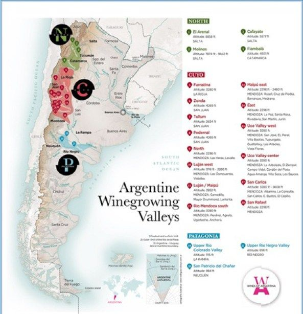 Beyond Pizza and Champagne: Argentine wine production and tourism | South American Real Estate News