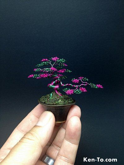 This is a pink and green mame wire bonsai tree by Ken To in a Jim Barrett pot.