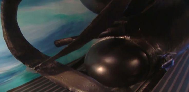 Japanese midget submarine, WWII