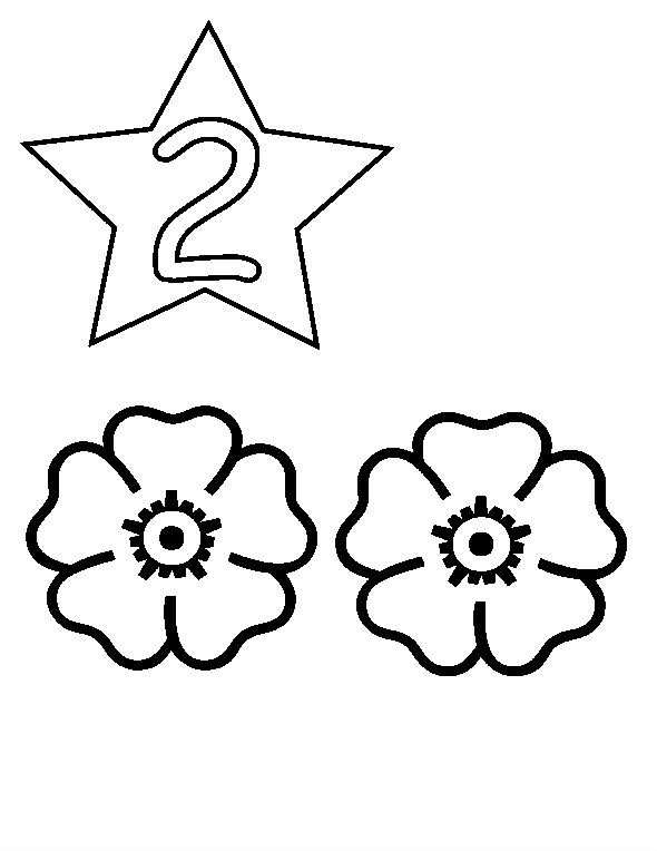 Simple Numbers Two With Flowers