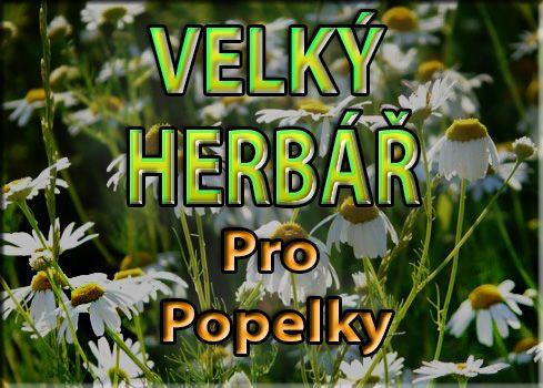 Velký herbář  také na :           http://nadeje-byliny.eu/module/herbal/list