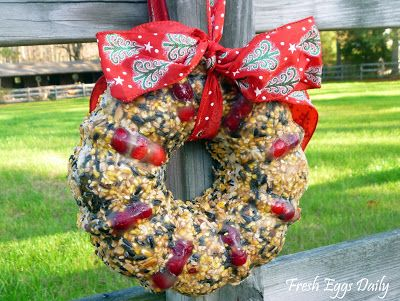 Fresh Eggs Daily: Scratch Sunflower Nut Edible Treat Wreath for Chickens