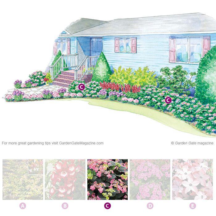 1000 images about planting design on pinterest for Foundation planting plans