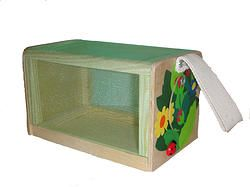 Insect Viewing Box