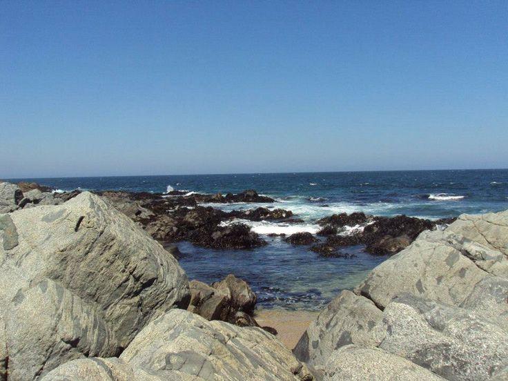 Chile-Isla Negra