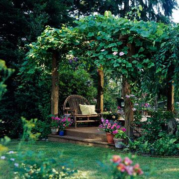 Reminds me of hanging out under the grapevine in our NC yard =) Grapevine-smothered Pergola:   Nothing dresses up a plain pergola faster than scrambling, spreading grapevines. Planted at the base of each support, grapevines add lush foliage that shades the seating area beneath. Another benefit? Fresh fruit for the picking, of course. Just pluck a ripened cluster as you relax.