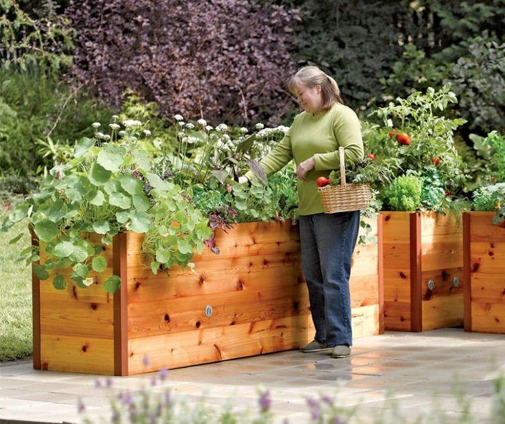 carré surélevé et jardinière en bois pour cultiver des plantes à la terrasse et au balcon