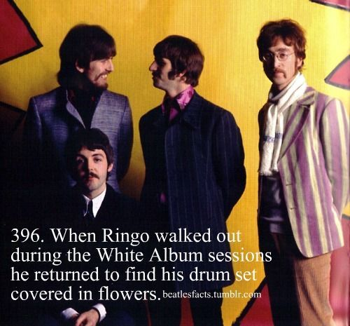 (the beatles,john lennon,ringo starr,paul mccartney,george harrison,the beatles facts)