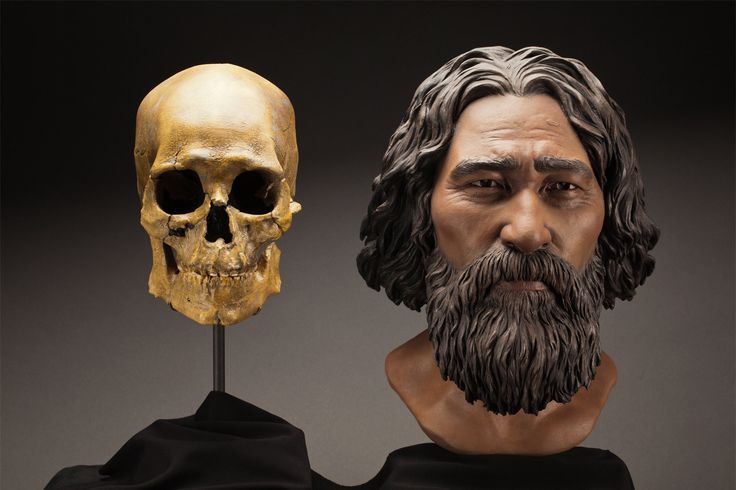 This clay facial reconstruction of Kennewick Man, who died about 8,500 years ago in what's now southeast Washington, was based on forensic scientists' study of the morphological features of his skull.