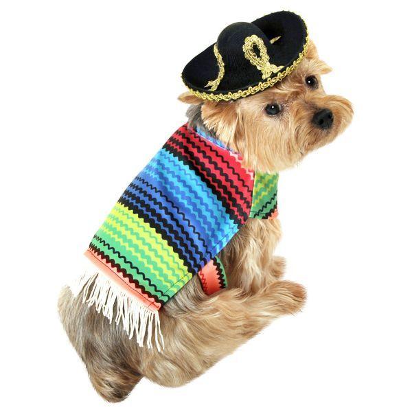 Amigo Dog Costume