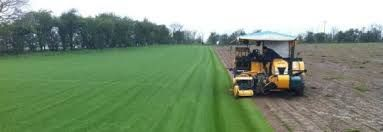 Topsoil Suppliers | Buy Turf Online London | Turf Essex | Turf Rolls- http://www.paynesturf.co.uk/