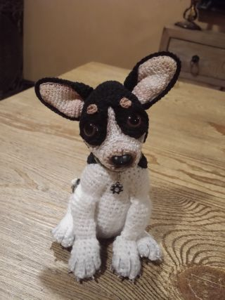 I have two miniature rat terriers dogs and love them so I decided to design a crochet rat terrier puppy. He will be displayed in my crochet cup.