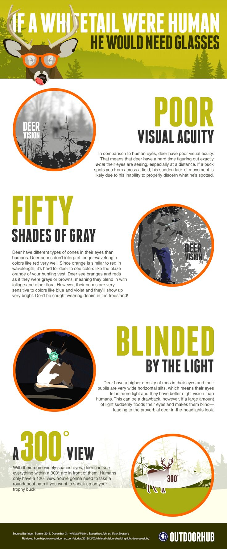 If a Deer Were Human, He Would Need Glasses - InfoGraphic