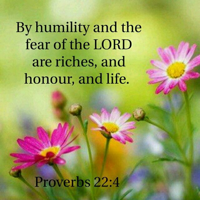 Proverbs 22:4 KJV                                                                                                                                                      More
