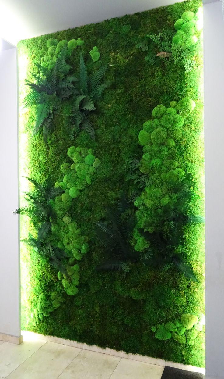 Zielona ściana z mchu i roślin stabilizowanych.