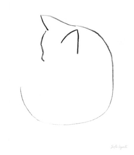Cat Contour Line Drawing : Best simple line drawings ideas on pinterest