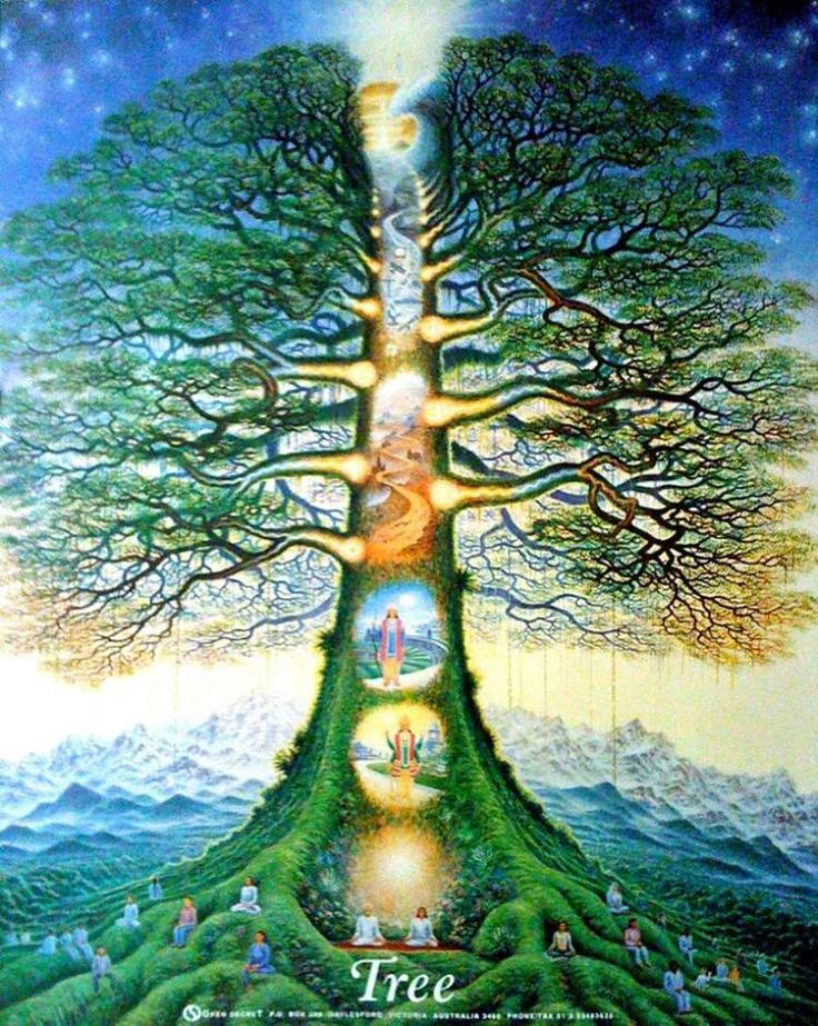 """""""We are all born to fly. Instead, we sit on the branches afraid of the leap into the unknown. But the unknown is where enlightenment lives. Our true nature is the unknown.""""  ― Enza Vita"""